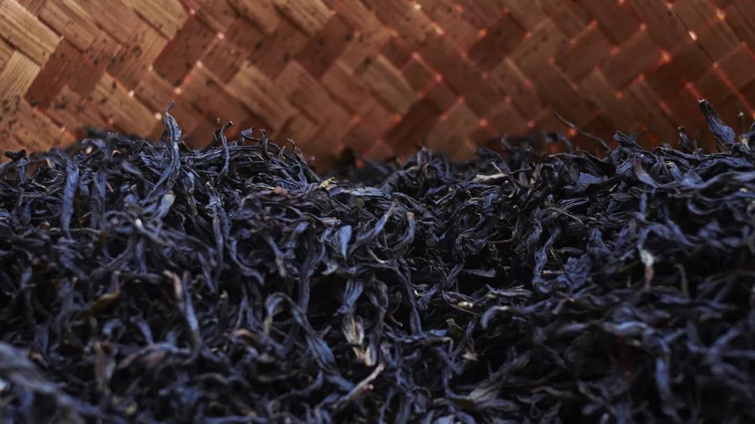 潮州单丛-四百岭-一止茶